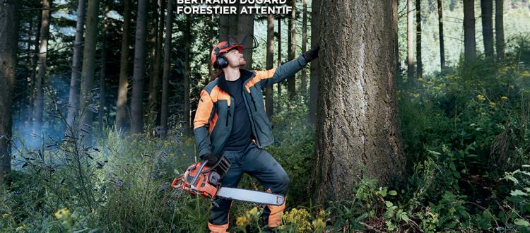Campagne de communication de la filière Forêt Bois