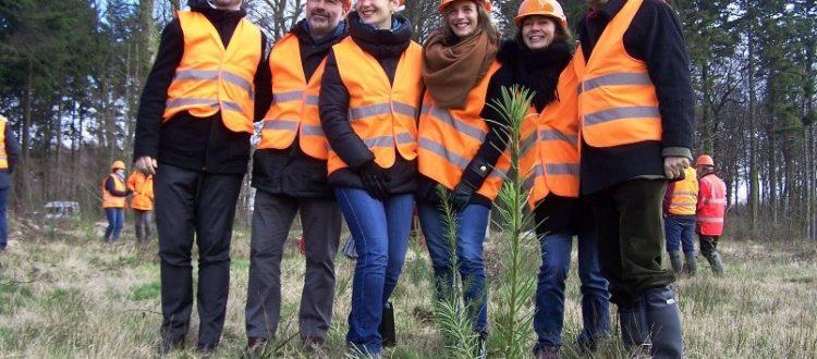 Salarié HERTA au cours d'une plantation de plants forestiers deDouglas