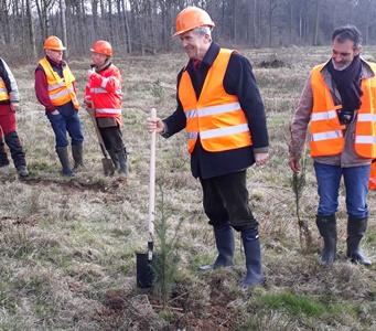 Arnaud de Belloy, PDG France de Herta plantant un jeune douglas