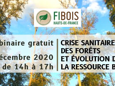 FiBois - Crise sanitaire des forêts et évolution de la ressource Bois